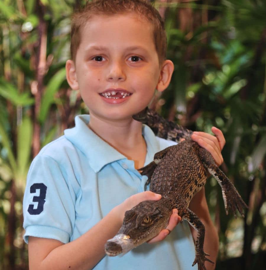 Wildlife Tours Port Douglas _Wildlife Habitat Feature Creature photo