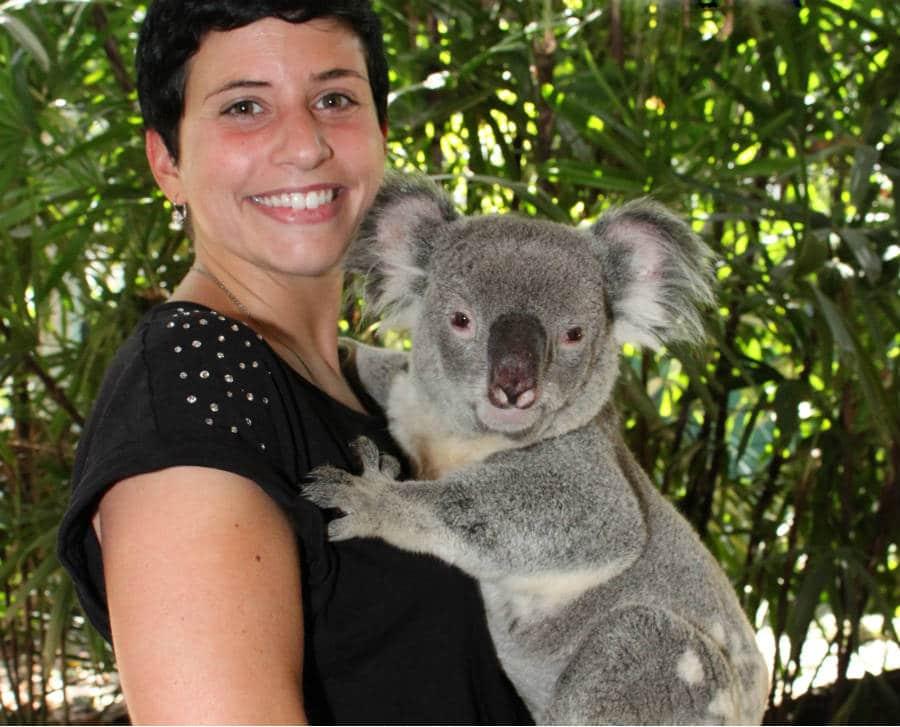 Wildlife Tours Port Douglas _Wildlife Habitat Koala Presentation and Photos