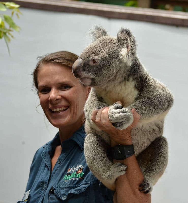 Wildlife Habitat - Koala Care