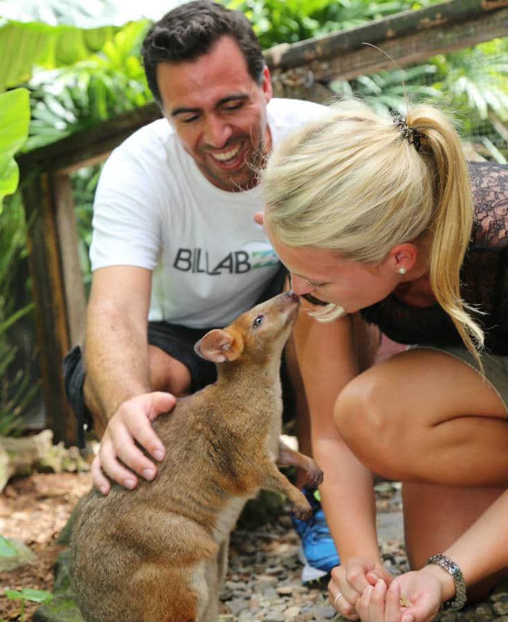 Queensland Wildlife Park - Wildlife Habitat