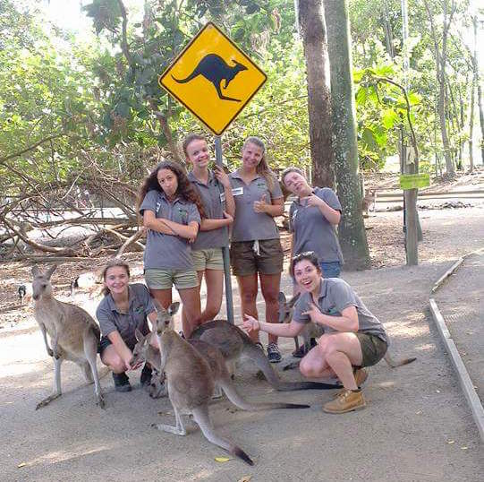 Volunteer program Port Douglas Wildlife Habitat