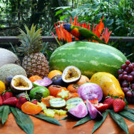 image library - Wildlife Habitat - Tropical fruit