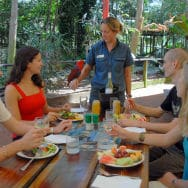 image library - Wildlife Habitat - Lunch with the Lorikeets