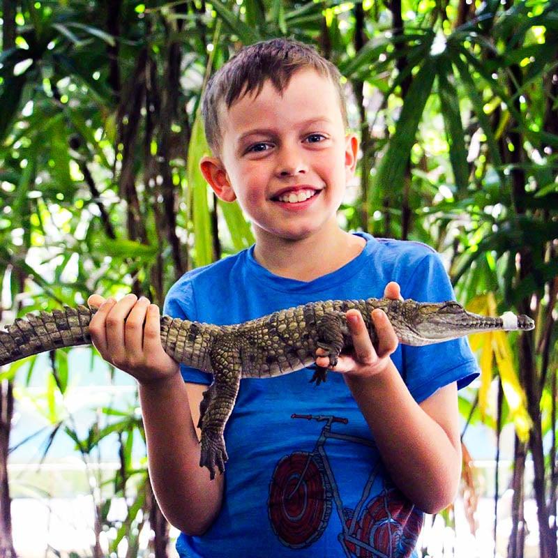 boy holding crododile wildlife habitat port douglas