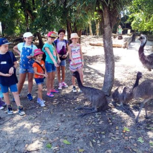 junior keepers school holidays program wildlife habitat port douglas