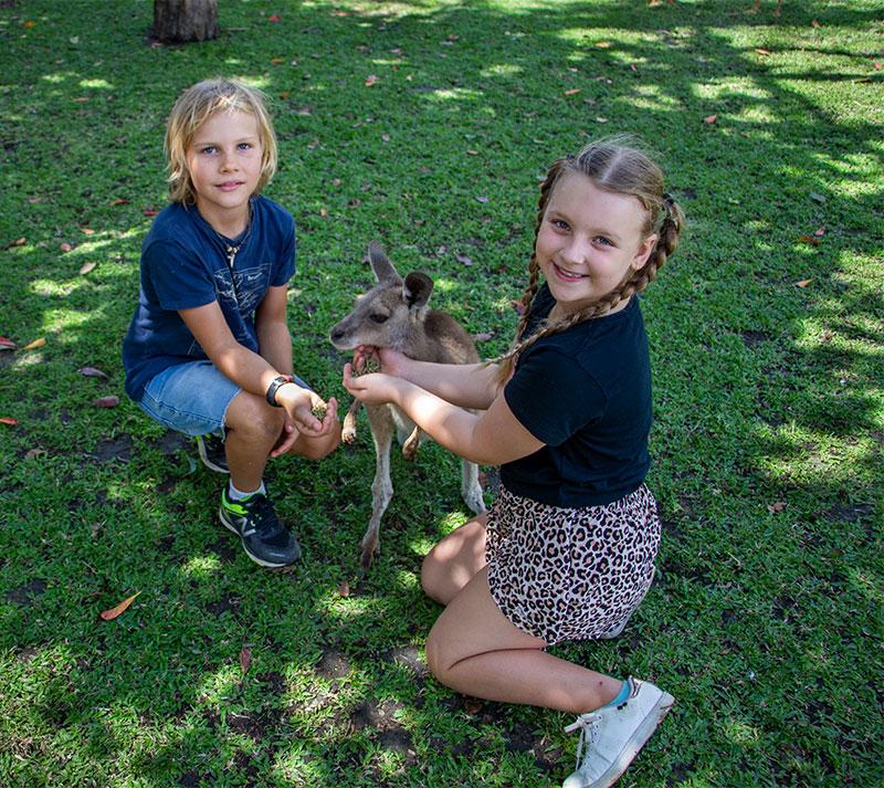 wildlife habitat school holiday activities in port douglas
